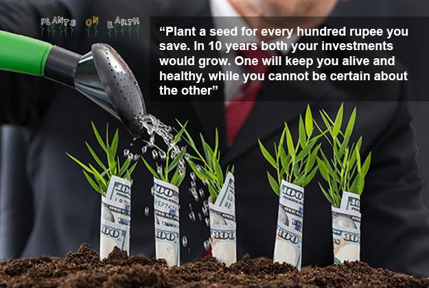 smart-investment-garden-quote
